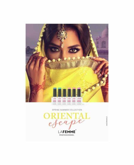 """Brochure con Cartella Colore Gel Polish """"NON STOP COLOR™"""""""