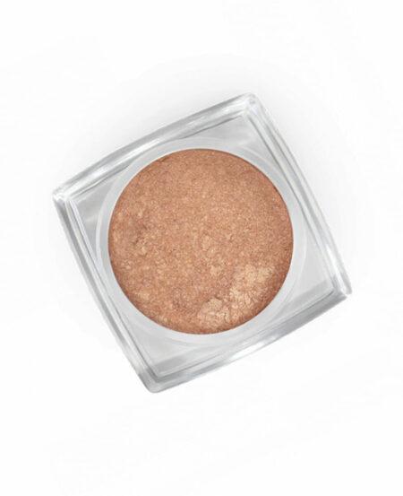 Pigment Powder (pigmento in polvere) - N.41